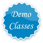 Demo Car Driving Class